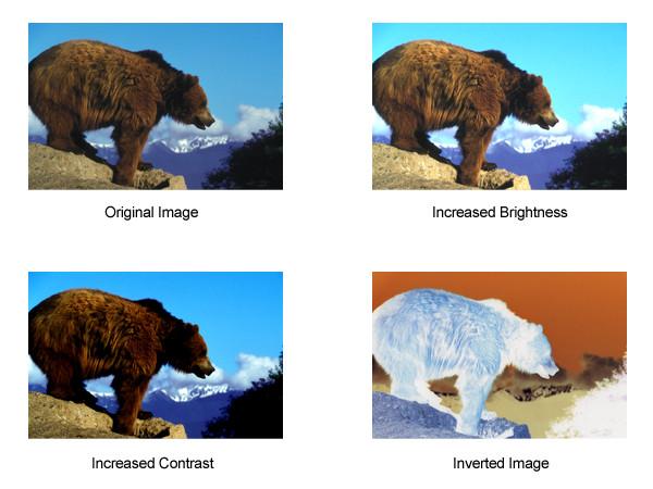 color manipulation options